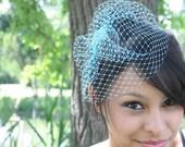 glamorous net birdcage veil- teal