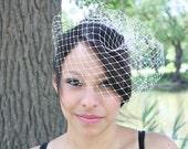 unique diamond net birdcage veil