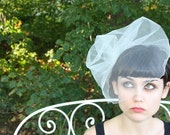glamorous tulle birdcage veil