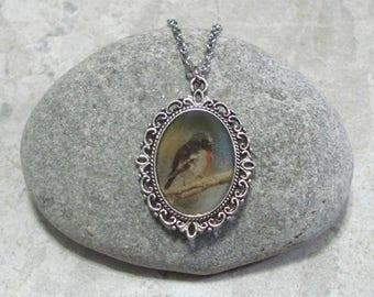 Robin Necklace Pendant Jewelry