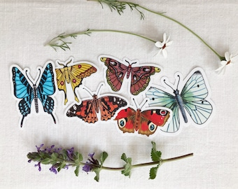 Butterflies, STICKERS - butterflies, giant comet, large striped swordtail, painted lady, cabbage white, atlas, peacock