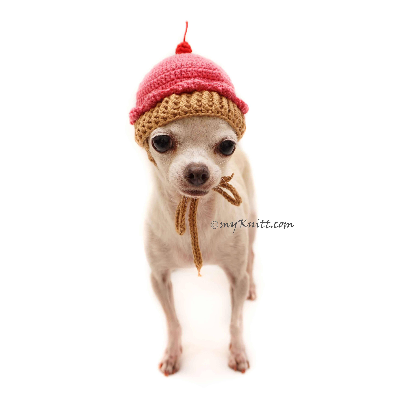 Fantastic Häkelmuster Hund Hut Model - Decke Stricken Muster ...