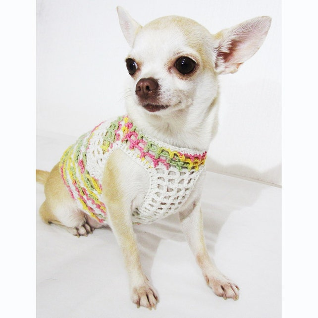 Cute Dog Clothes Net Crochet Dog Clothing Colorful Chihuahua | Etsy
