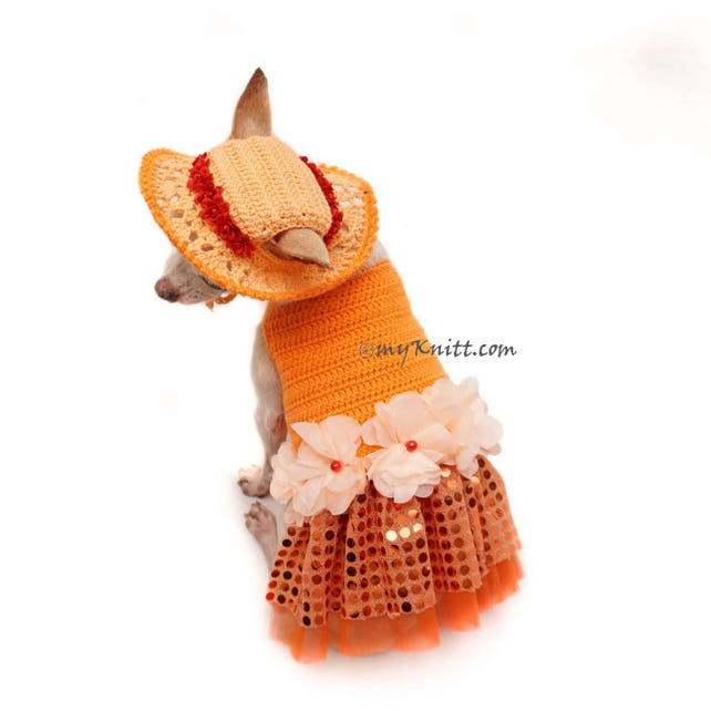 Bling Bling perro naranja vestido Crochet verano sombrero | Etsy