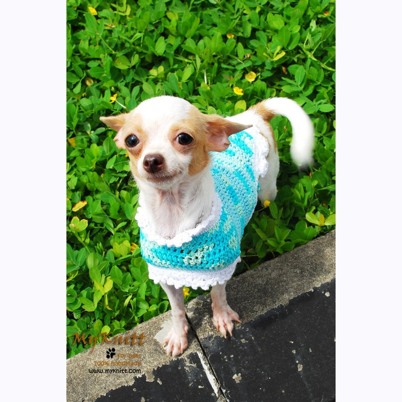 c3b7f0944 Turquoise Dog Dress Chihuahua Clothes Teal Dog Clothes