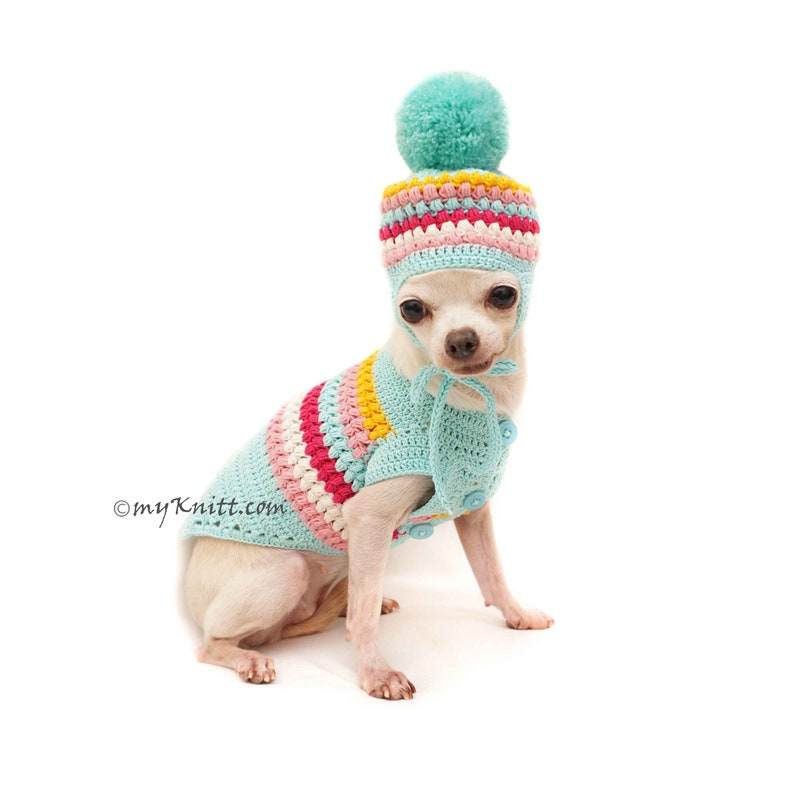 163581847 Teal Dog Sweater Dog Pom Pom Hat Cute Dog Clothes Chihuahua