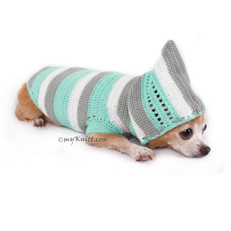 Babyblau Türkis Hund Hoodie Größe Medium niedliche gehäkelte