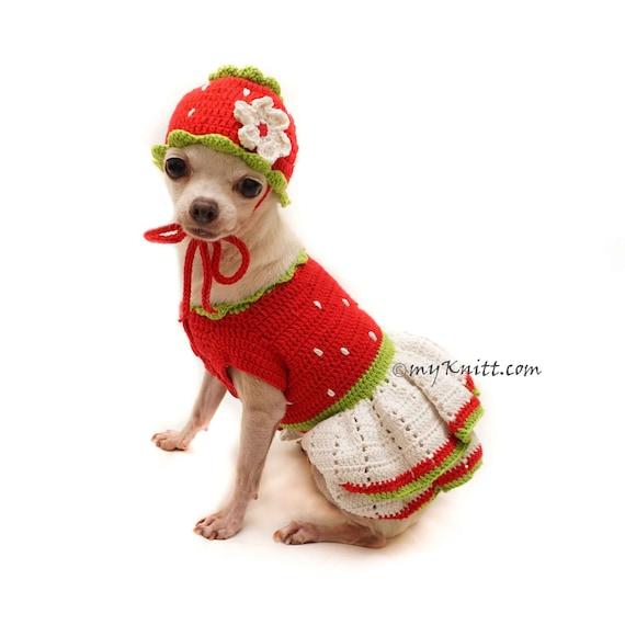 Strawberry Shortcake Dog Costume Strawberry Dog Hat Crochet | Etsy