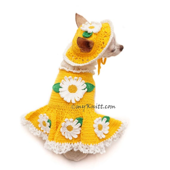 Ropa para perros lindos vestido de amarillo perro divertido | Etsy