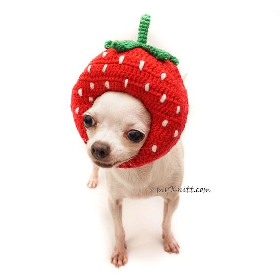 Erdbeermütze Erdbeere Häkeln Amigurumi Obst Häkeln Hund Etsy