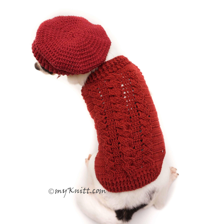Kabel Zopfmuster häkeln Hund Pullover Französisch Baskenmütze
