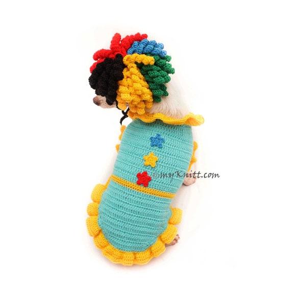 Hund Kostüm Geburtstag Hut Hund Geburtstag Outfit Clown für | Etsy