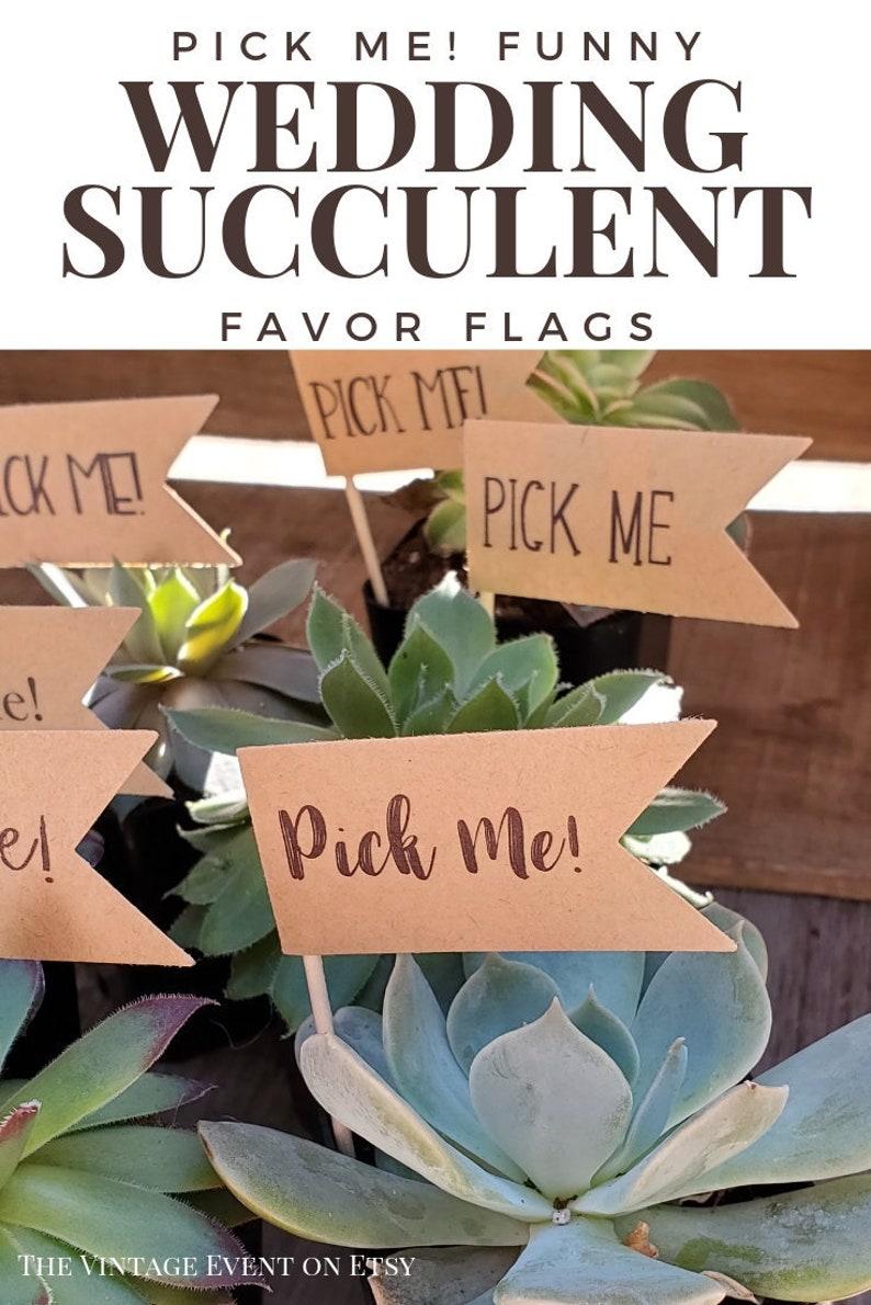 Favor Flags Pick Me Picks Succulent Wedding Favors Etsy