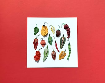 Paper Hot Peppers -  Print