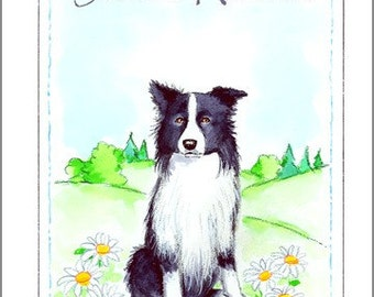 Border Collie Note Cards (box of 16)