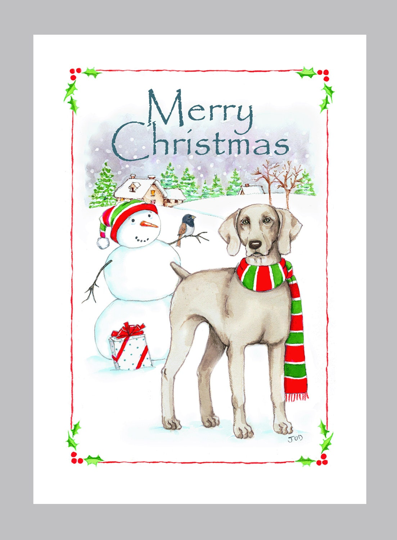 Weimaraner Christmas Card Box of 16 Cards & Envelopes | Etsy