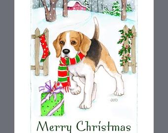 Beagle Dog Christmas cards, box of 16 Cards and 16 Envelopes