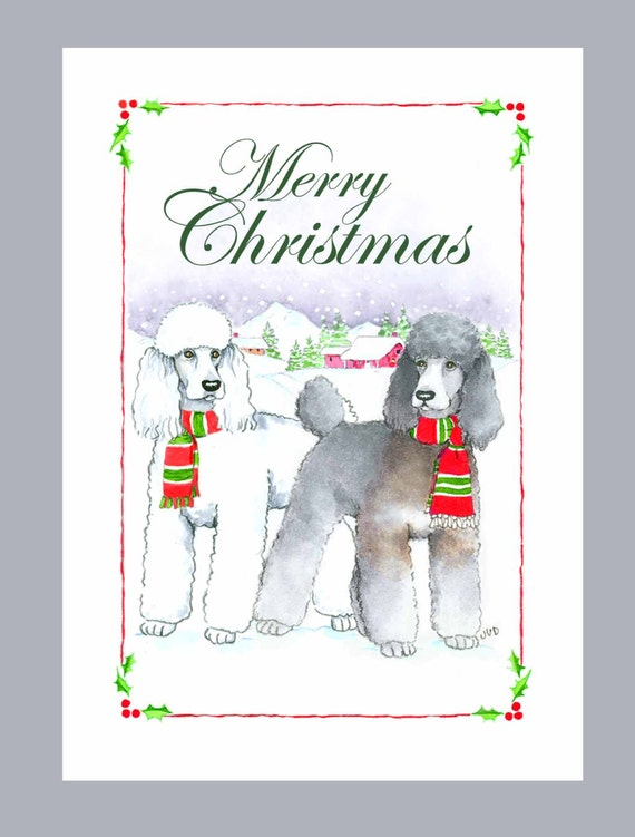 Poodles White And Phantom Sable Christmas Cards Box Of 16 Cards And 16 Envelopes