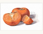 Persimmons Fruit Watercolor Fine Art Print - 5x7, 8x10, and more