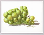 Sauvignon Blanc Grapes Watercolor Giclée Print