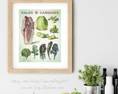Kales and Cabbages Watercolor Giclée Print