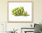 Crisp White Wine Grapes Watercolor Giclée Print