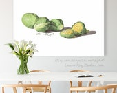 Brussels Sprouts Watercolor Giclée Print
