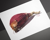 Red Tropea Onion Watercolor Print • Vegetable Kitchen Watercolor Art • Food Watercolor Prints • Gifts for Mom • Modern Kitchen Wall Decor