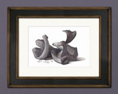 Black Trumpet Mushrooms Watercolor Print • Kitchen Wall Decor • Kitchen Watercolor • Gifts for Cooks • Modern Kitchen Wall Decor • 5x7 8x10