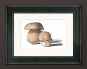 Gourmet Porcini Mushrooms Watercolor Print • Kitchen Wall Decor • Kitchen Watercolor • Gifts for Mom • Modern Kitchen Wall Decor • 5x7 8x10