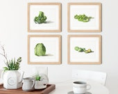 Set of 4 Cabbage Vegetables Watercolor Giclée Prints