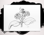 Verbena Black and White Flower Print • Kitchen Artwork • Fine Art Print • Gifts for Mom • Modern Kitchen Wall Decor • 5x7 8x10