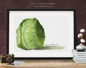 Green Savoie Cabbage Watercolor Giclée Print