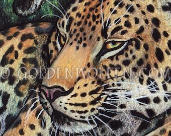Lazy Leopard Cat Miniprint