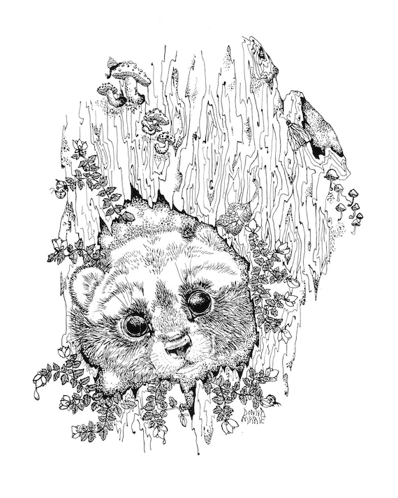 Blank All Occasion Greeting Card- Nature and Raccoon Black and White Ink -