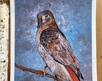 Hawk Print Of Painting Home Decor  Wall Art Space Birds of Prey on Branch Woodland Forest Animals Red Tailed Hawk