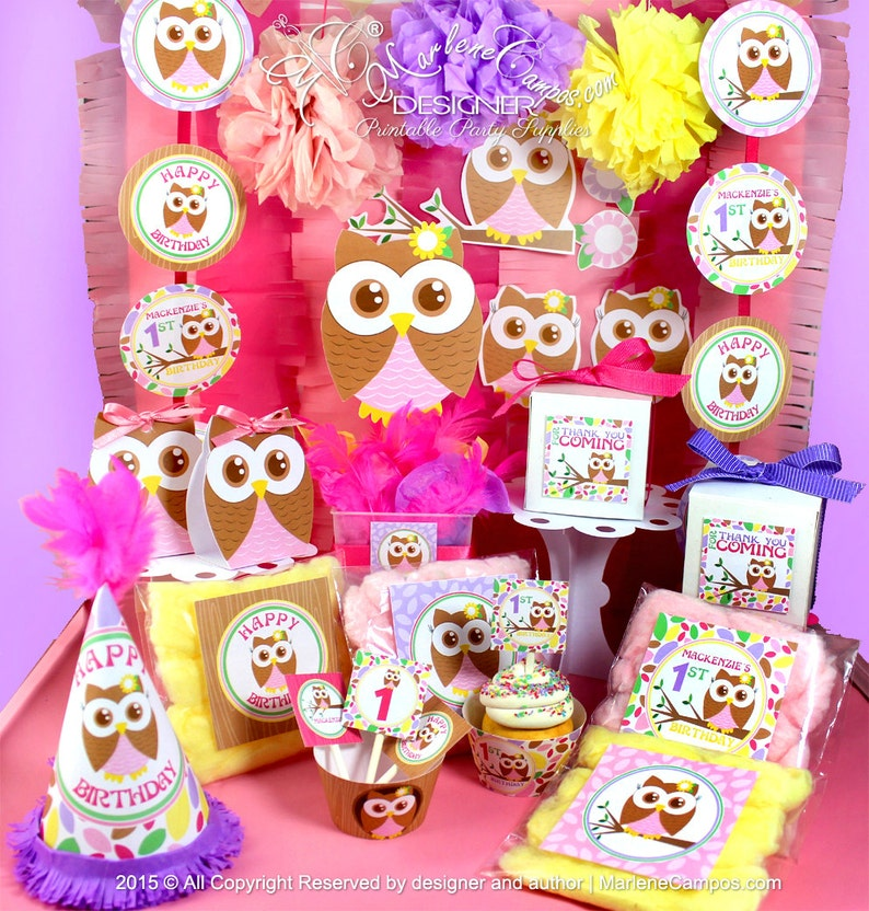 Owl Girl Birthday 1st Baby Shower Party