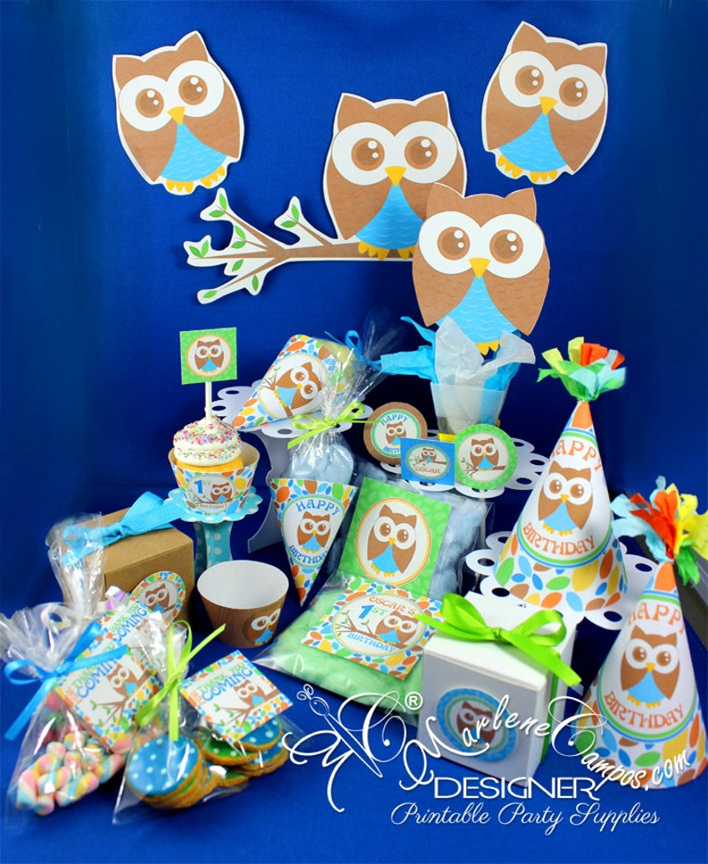 Owl Birthday 1st Baby Shower Party