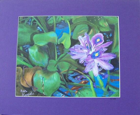 43de36c5fb9 Water Hyacinth in Bloom