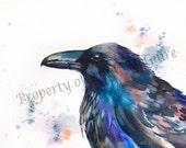 "Watercolor Print ""Raven"" by Sandi McGuire"