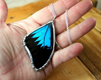 Blue and Black Butterfly Pendant - Real Butterfly Wing