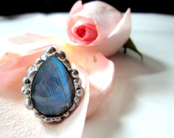 Real Butterfly Ring, Blue Morpho Zephyritis