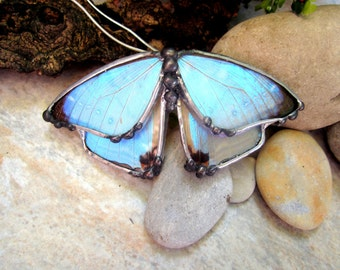 Real Butterfly Wing Necklace - Morpho Sulkowski - Statement Necklace - Iridesent Butterfly