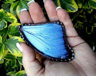 Real Butterfly Pendant, Large Blue Morpho, Butterfly Jewelry
