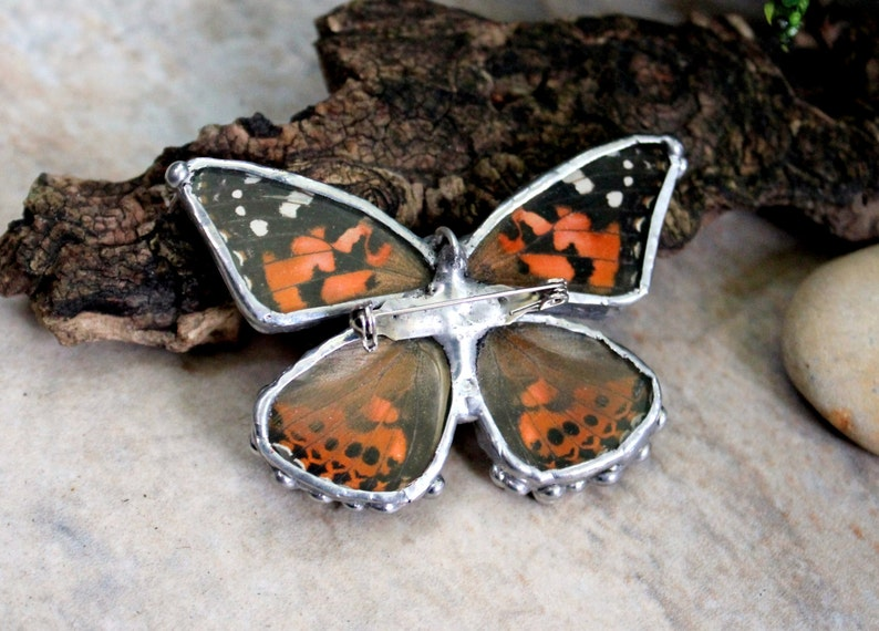 Painted Lady Butterfly Real Butterfly Necklace and Brooch