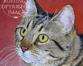 Tabby Cat on Red, Giclee Fine Art Print, Signed A E Ruffing, on 8.5 x 11 inch art paper