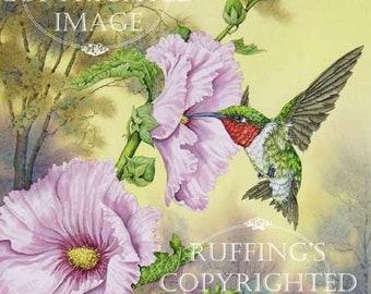 Hummingbird and Pink Hollyhocks 8.5 x 11 Giclee Fine Art Bird Print Signed A E Ruffing