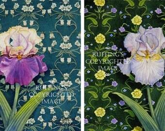 Art Nouveau Iris Print Set of 2, Purple, Tan, Lavender on Green, Giclee Fine Art Prints Signed Elizabeth Ruffing, on 8.5x11 inch art paper