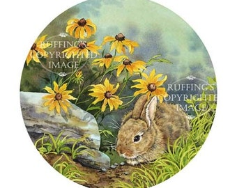 Hiding Cottontail Rabbit Brown Eyed Susans Giclee Fine Art Print, Yellow Gold Woodland Scene Signed A E Ruffing, on 8.5 x 11 inch art paper