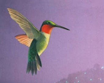 Surreal Art Print, Hummingbird Art, 8.5 x 11 Inch Paper Collage Print, Purple and Green, Colorful Wall Decor, frighten